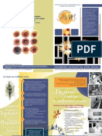 Symprattw Brochure