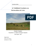 Estudo de viabilidade fazenda Conquista