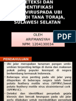 Deteksi Dan Identifikasi Potyviruspada Ubi Jalar Di Tana Toraja, Sulawesi Selatan