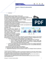 Istologia 23 - Mastociti e Plasmacellule