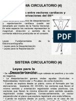 Sistema Circulatorio II