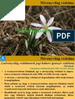 5.Óra Természetvédelem Növényvilágvédelme