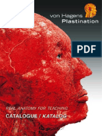 Plastination catalaugue
