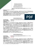 INDEPENDIZACION-TORRES-MONTEAZUL.doc