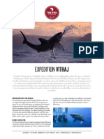 Expedition vithaj