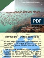Contaminacion Del Mar Negro ES