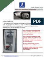 Tipo de Emissor de Telecomando Peugeot 206