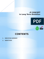 IP Concept in Long Term Evolution