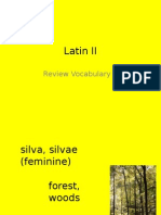 Latin i i Vocab Review 1