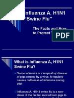 h1n1 Swine Flu Presentation