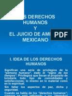 Los Derechos Humanos y El Juicio de Amparo