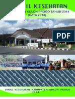 Profil Kesehatan Tahun 2014 Data 2013