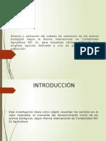 Presentacion Nic 41