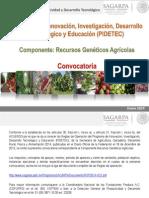 CONVOCATORIA_RGA.pdf