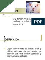 BIOTERIO (1)