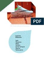 Presentacion de efectos en Power Point.pptx