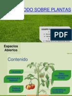 Todo Sobre Las Plantas