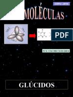 GLÚCIDOS - LIPIDOS