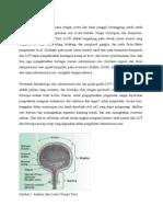 Referat Urologi Dr.abraham (2)