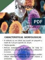 Presentación Linfocitos PDF