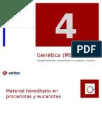 Tema 4 Genetica Aplicada