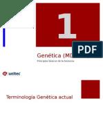 Tema 1 Introducción a la Genetica