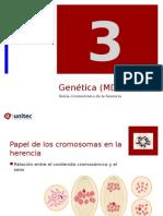 Tema 3 Genomas Especiales