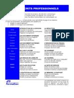 Documente Profesionale Français