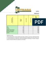 Plantilla Costos Unit