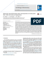 Arbuscular Mycorrhizal Fungi Reduce Decomposition of Woody Plant