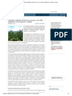 CCI es - Variedad Castillo®_ resistencia a la roya y a la CBD, adaptación a las regiones y calidad