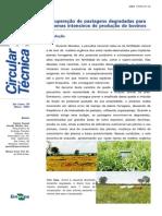 Recuperação de pastagens degradadas.pdf