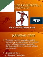 Sis Tem Muskulo-skeletal II, Hitam