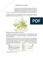 IMPLANTACIÓN Y FORMA - BIOCLIMA.docx