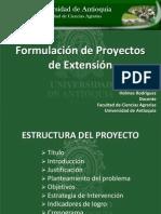 1-1-Formulacion_de_proyectos.pdf