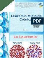 Exposicion Lucemia Mieloide Cronica