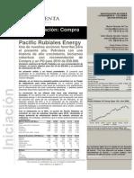 20100201 Bolsa y Renta - Informe Iniciacion