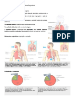 CNAT6 (1)Resumo SistemaRespiratório