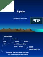 Bioquimica de Lipidos