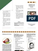 Tríptico informativo para docentes