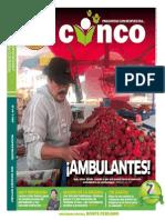 CINCO ENERO 2015.pdf