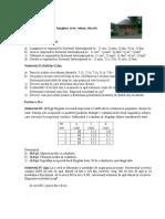 test_de_evaluare_marimi_fizice_vi.docx