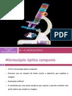 III - MICROSCÓPIO.pdf