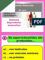 9.Teste.sistema.reprodutor.masculino