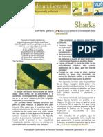 37 SHARKS.julio-agosto 2009