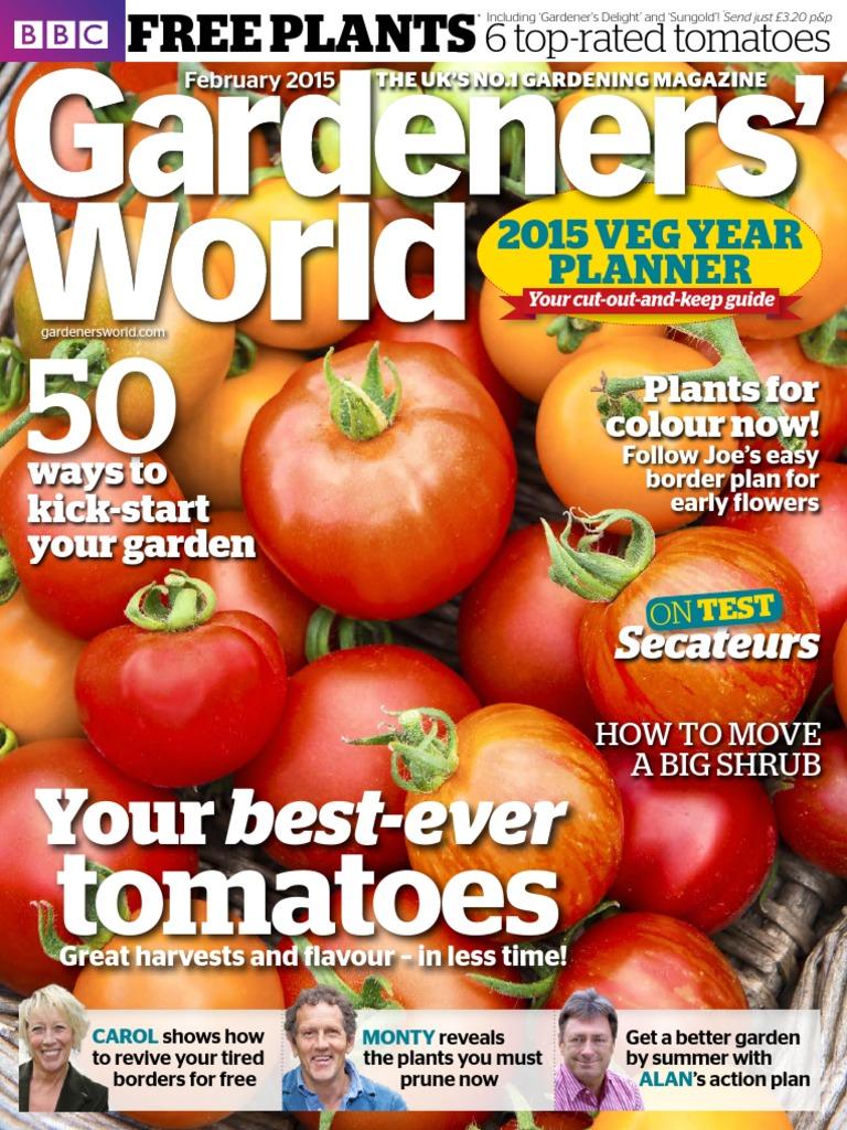 Tomato marmande agm seeds d t brown vegetable seeds - Tomato Marmande Agm Seeds D T Brown Vegetable Seeds 19