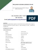 CV Guillermo Javier Guevara Gonzales Polar 2015