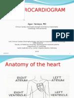 Slide Electrocardiogram Update