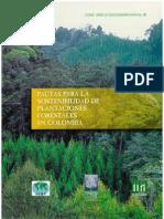 SOSTENIBILIDAD  PLANTAFORESTALES