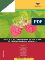 Producción de Frambuesa